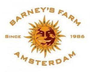 Barney's Farm CBD-cannabiszaden