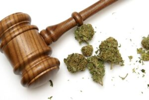 Wietolie en wetgeving