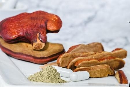 Medicinale paddenstoelen capsules